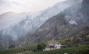 Un feu de friches brûle le long d'un contrefort montagneux à Oliver, C.-B., en août 2015. (LA PRESSE CANADIENNE/Jonathan Hayward)